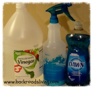 Dawn and Vinegar Cleaner