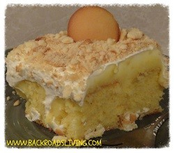 Banana Pudding Poke Cake ~ Back Roads Living