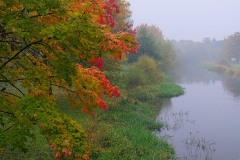 Autumn the-fog-
